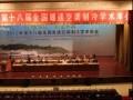 兰舍新风•中国建筑•HVAC系统节能解决方案全国巡回论坛(合肥站)隆重召开 (11)